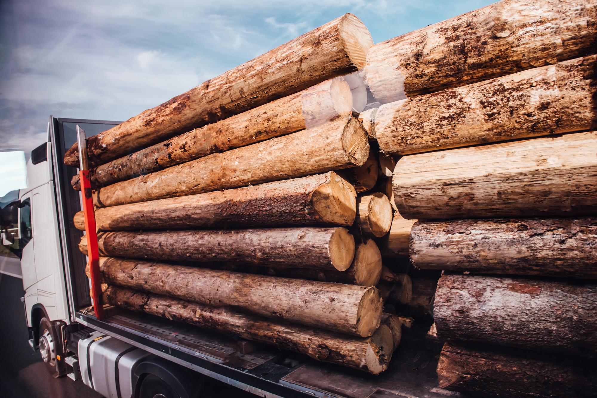 木材を運ぶトラック